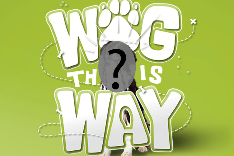 Wag this way