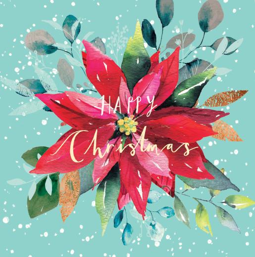 Christmas Poinsettia Christmas Card